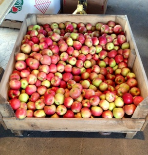 How do you like them apples? LJs' sells apples by the peck, half-bushel, and bushel!